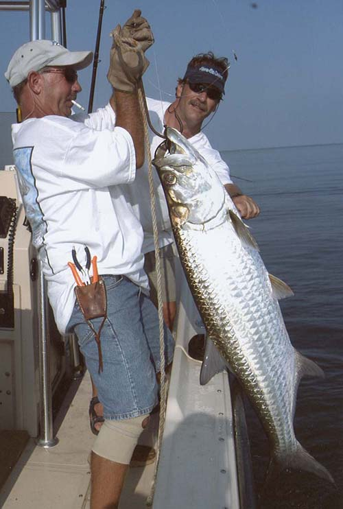 Seabrook anglers fishing kemah fishes texas fishing guides for Galveston fishing charter